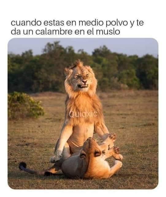 Marcianadas 367 15feb19001326 (4)