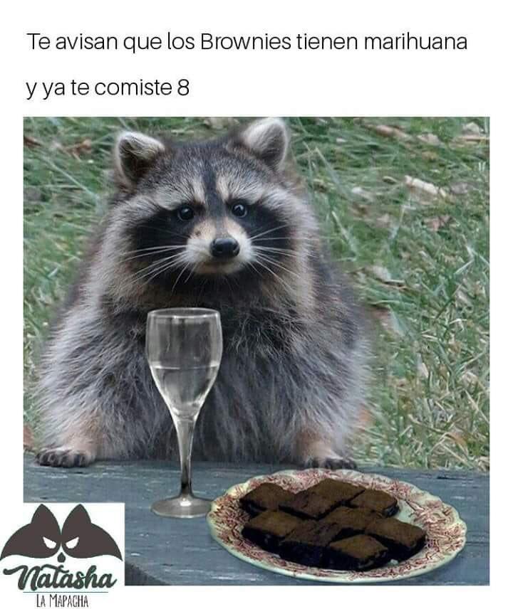 Marcianadas 368 220219001508 (119)