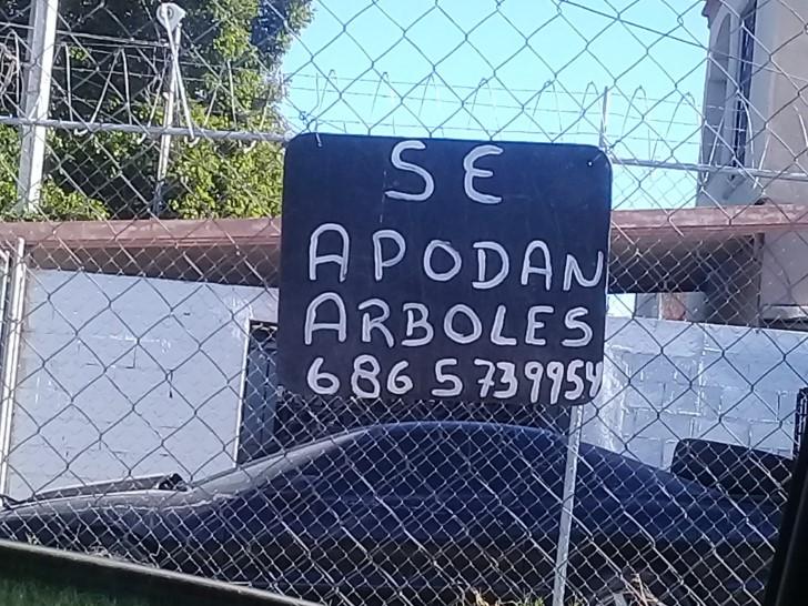 Marcianadas 368 220219001508 (345)