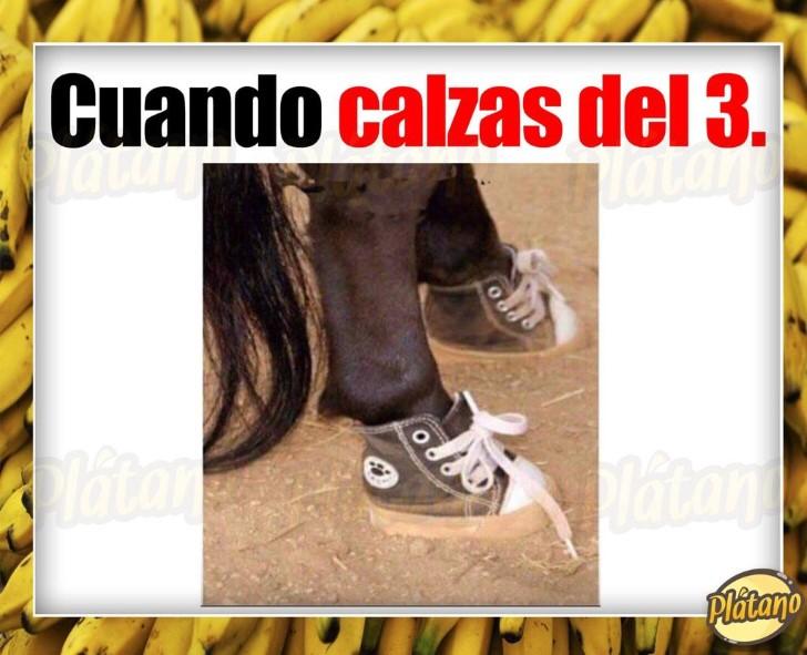 Marcianadas 368 220219001508 (40)