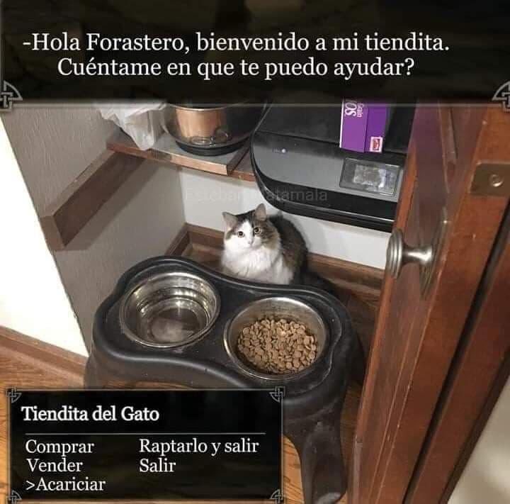 Marcianadas 369 290219001209 (22)