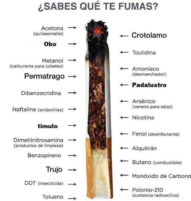 Marcianadas 370 080319001003 (136)