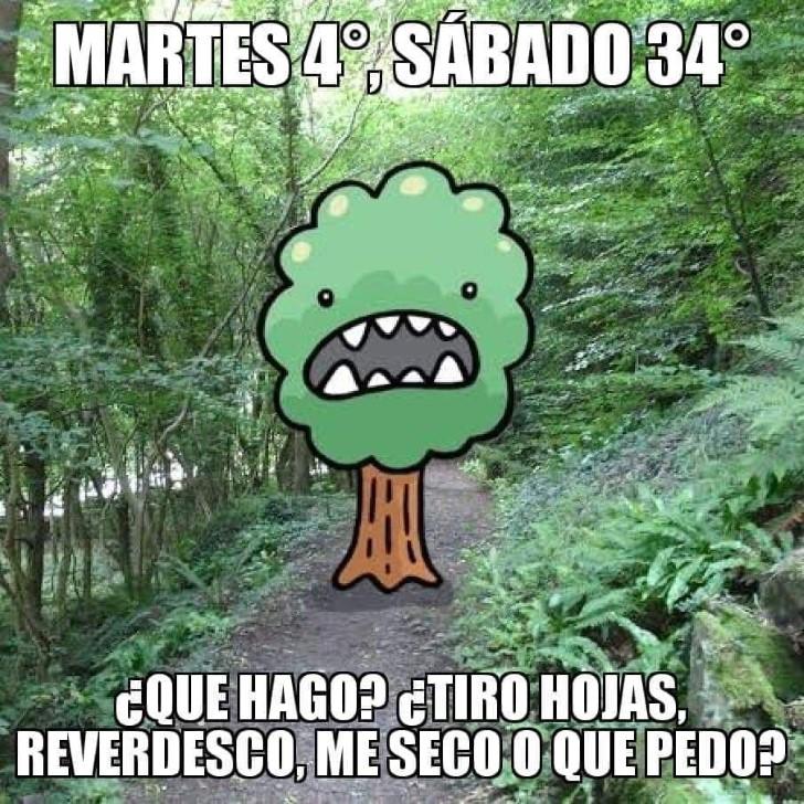 Marcianadas 370 080319001003 (255)