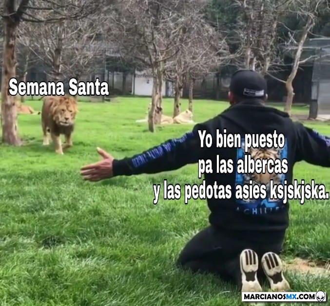 Marcianadas 370 080319001003 (31)