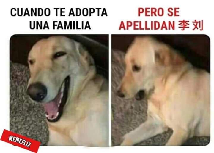 Marcianadas 370 080319001003 (74)
