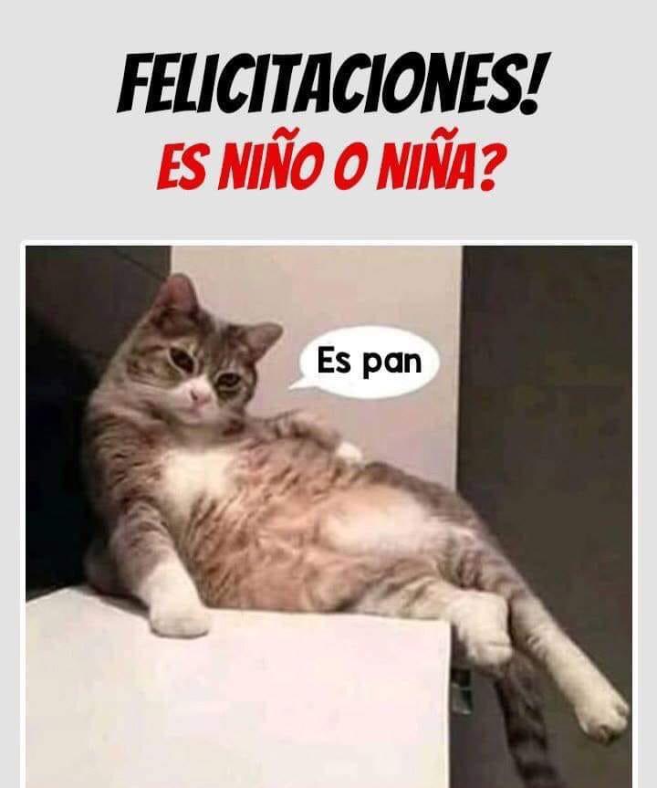 Marcianadas 371 150319001202 (294)
