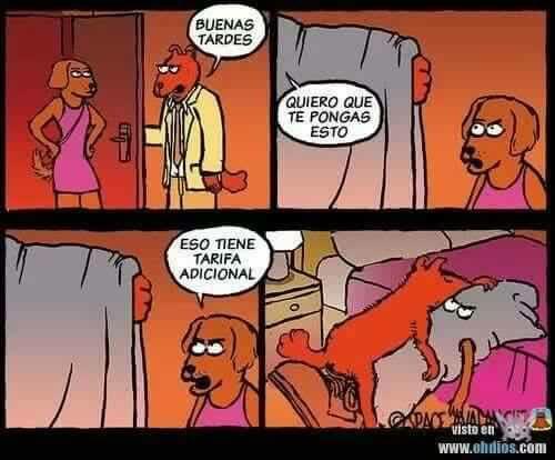 Marcianadas 371 150319001202 (42)
