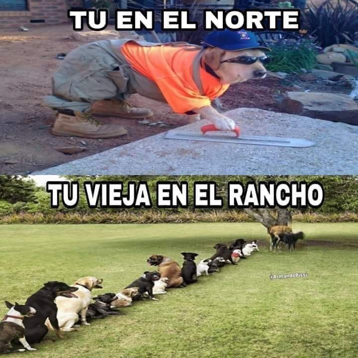 Marcianadas 372 220319001234 (136)