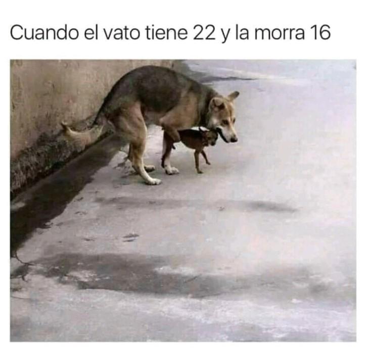 Marcianadas 372 220319001234 (219)