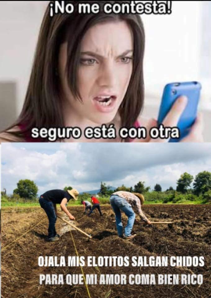 Marcianadas 373 29032019001515 (16)