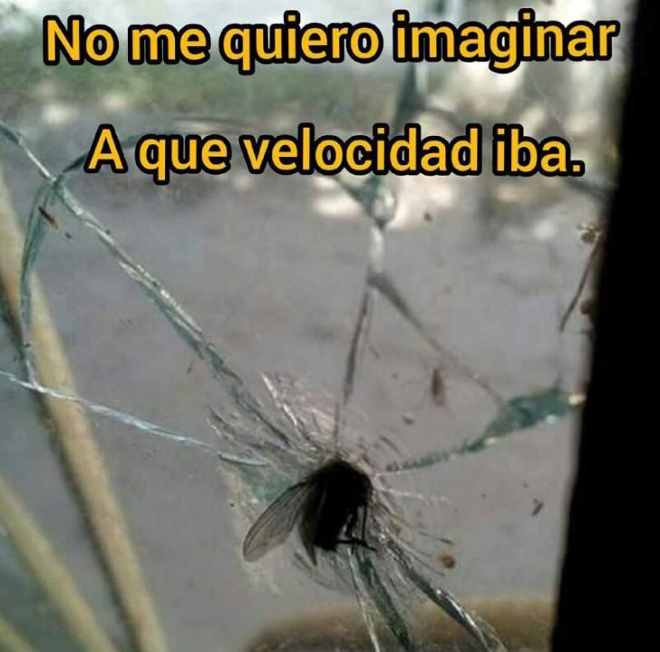 Marcianadas 373 29032019001515 (191)