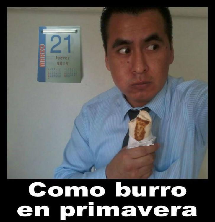 Marcianadas 373 29032019001515 (317)