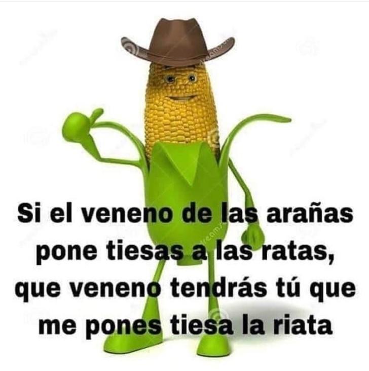 Marcianadas 373 29032019001515 (76)