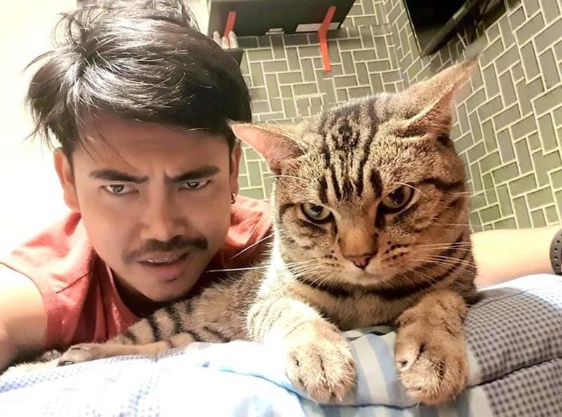 gatos actividades nocturnas (2)