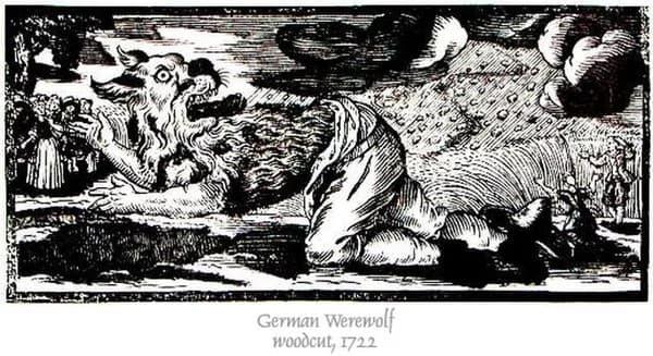 hombre lobo ilustraciones