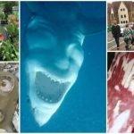 15 Fotos alucinantes que captaron errores en la realidad