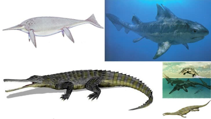 portada monstruos acuaticos