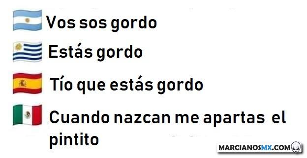 Marcianadas 374 050419001333 (1)