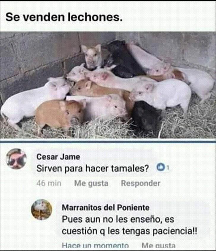 Marcianadas 374 050419001333 (102)