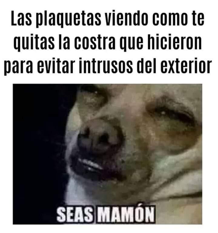 Marcianadas 374 050419001333 (167)