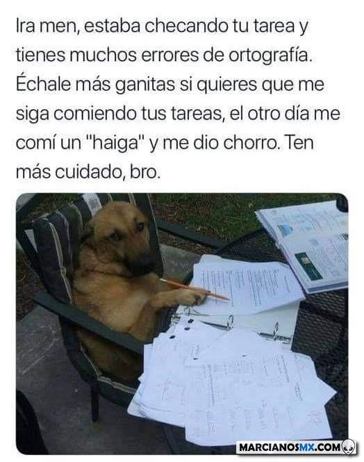 Marcianadas 374 050419001333 (369)