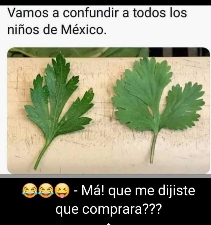 Marcianadas 374 050419001333 (372)