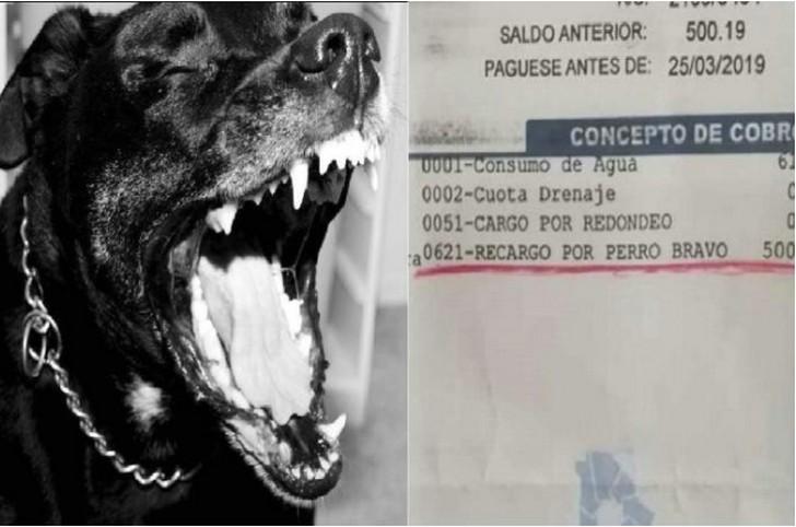 Marcianadas 374 050419001333 (42)