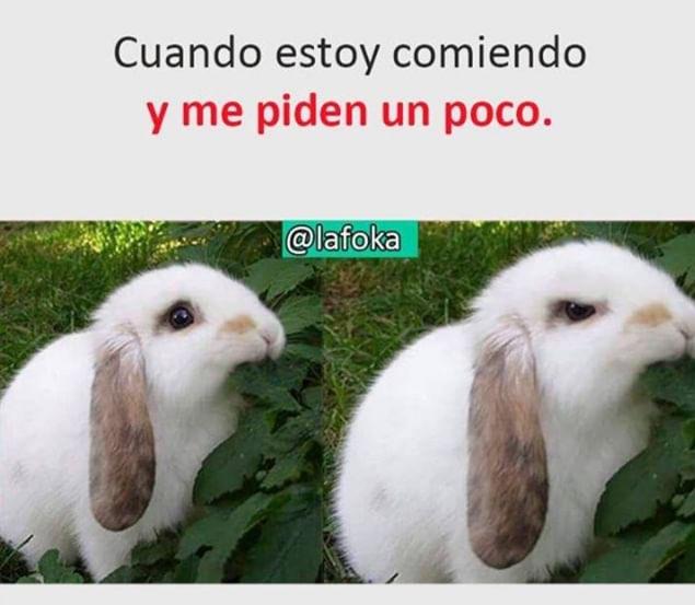 Marcianadas 375 1200419001153 (155)