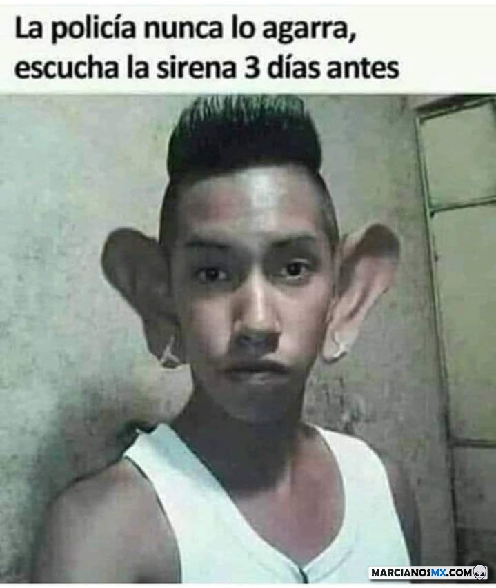 Marcianadas 375 1200419001153 (187)