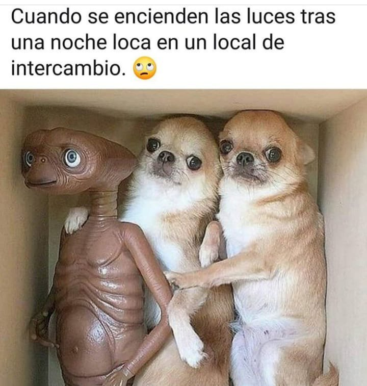 Marcianadas 375 1200419001153 (207)