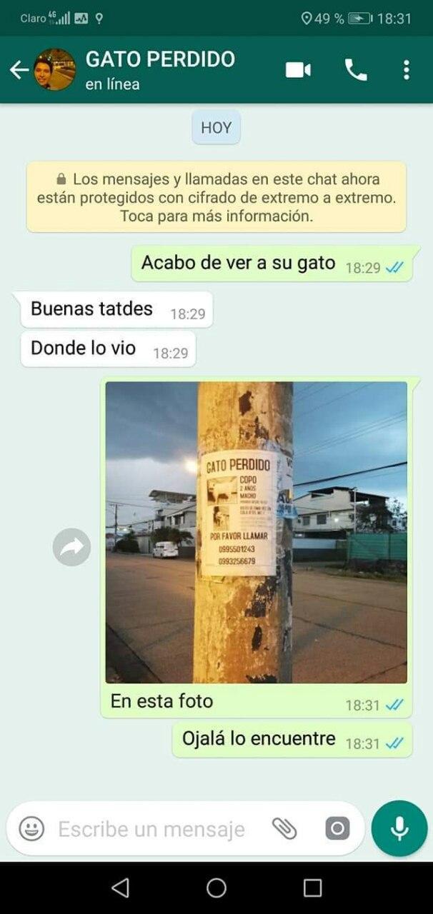 Marcianadas 375 1200419001153 (250)