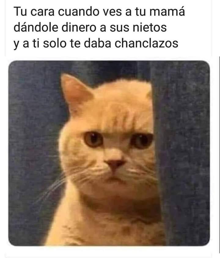 Marcianadas 375 1200419001153 (39)
