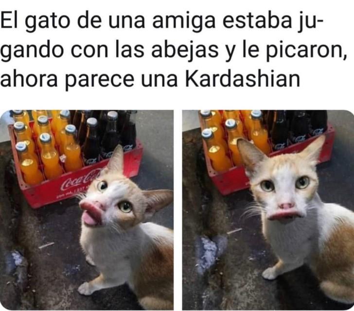 Marcianadas 375 1200419001153 (93)
