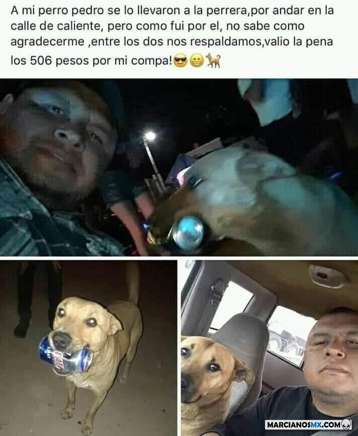 Marcianadas 376 190419001345 (131)