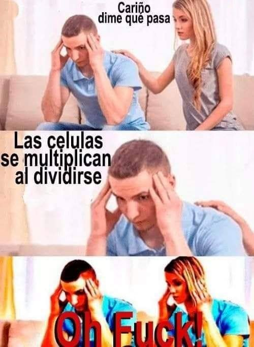 Marcianadas 376 190419001345 (304)