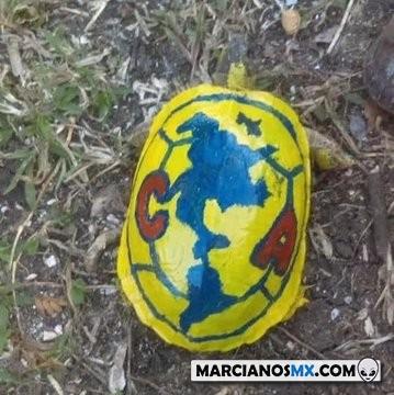 Marcianadas 376 190419001345 (39)