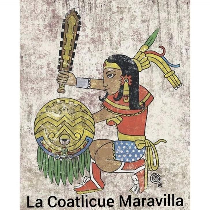 Marcianadas 376 c5 (11)