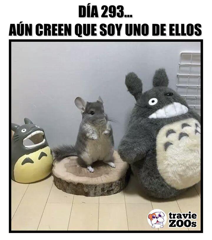Marcianadas 377 260419001400 (102)