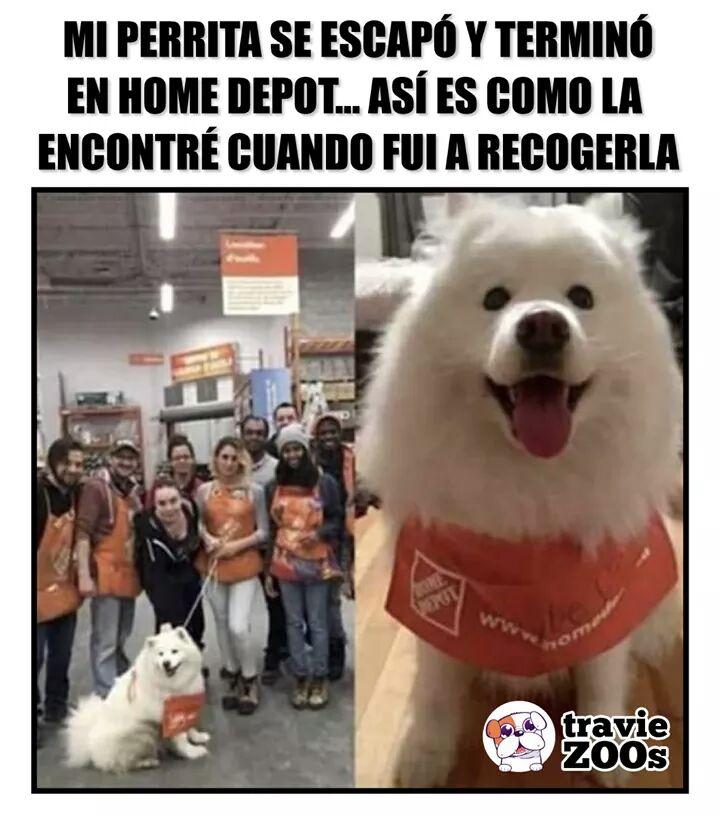 Marcianadas 377 260419001400 (104)