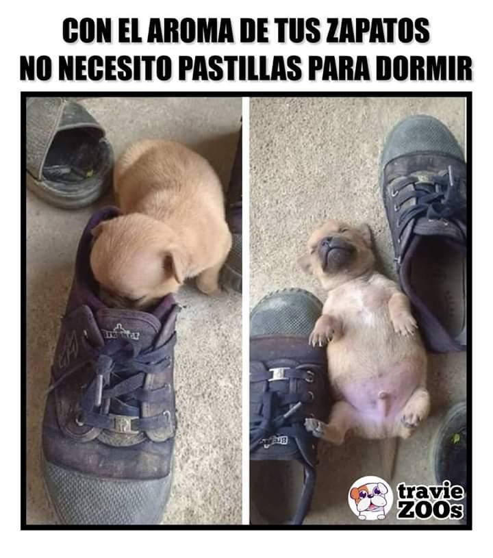 Marcianadas 377 260419001400 (130)
