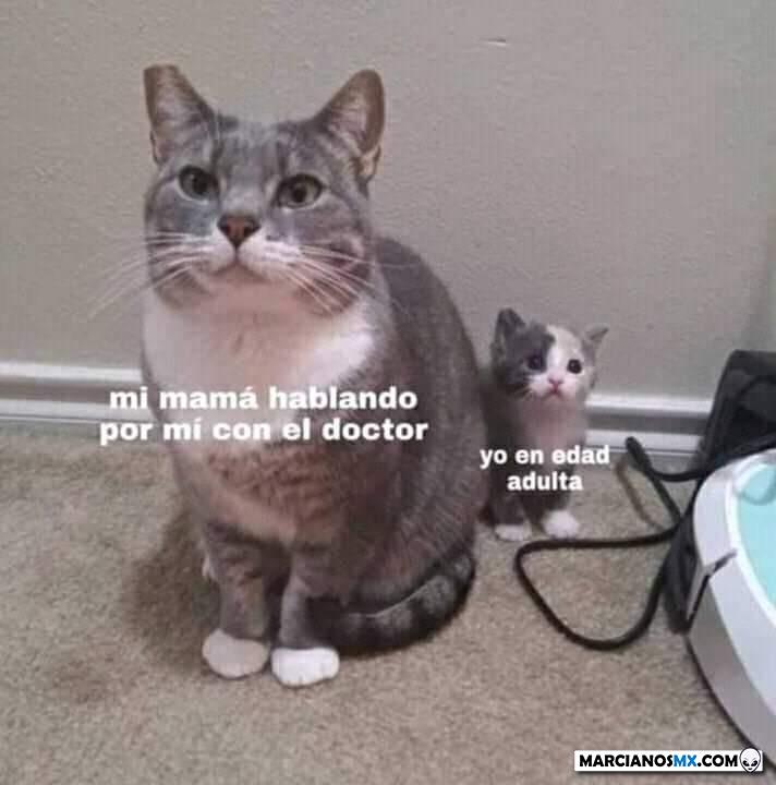 Marcianadas 377 260419001400 (171)