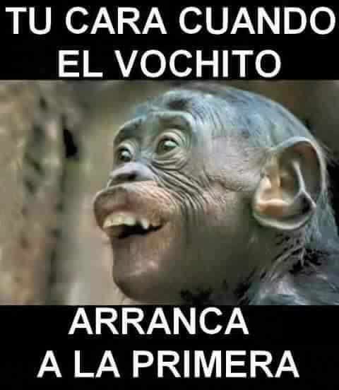 Marcianadas 377 260419001400 (56)
