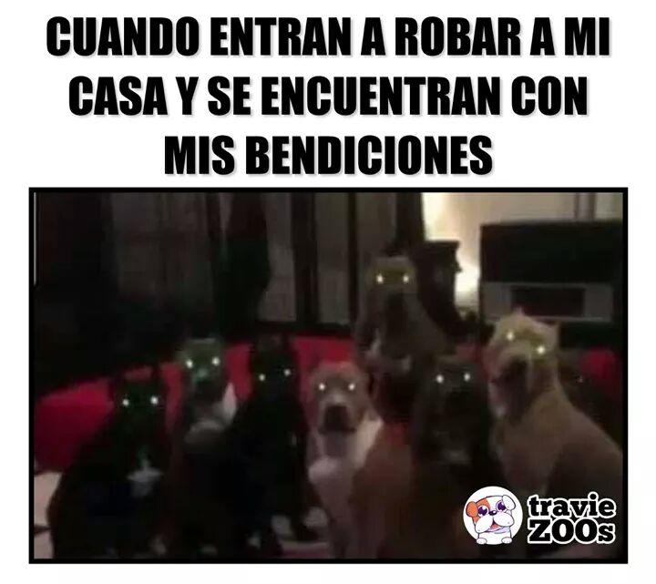 Marcianadas 377 260419001400 (89)