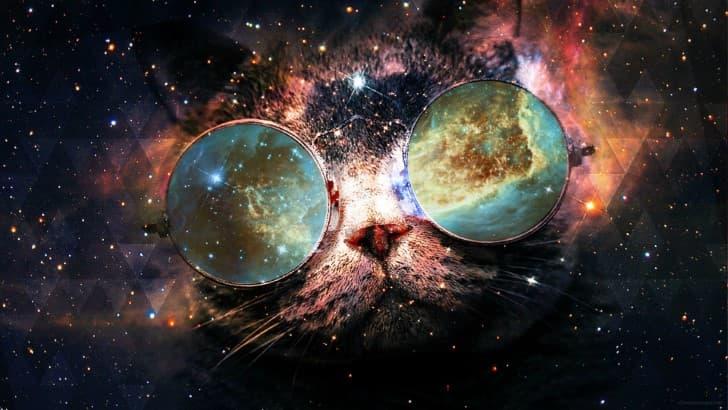 gato interdimensional espacio