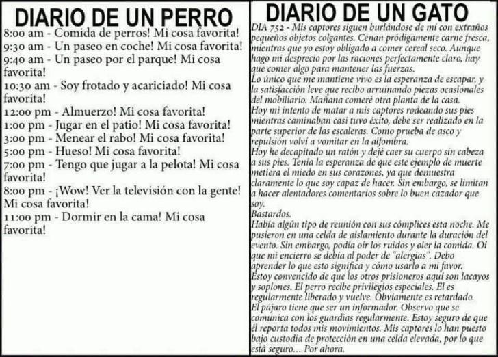 Marcianadas 378 03May2019001552 (42)