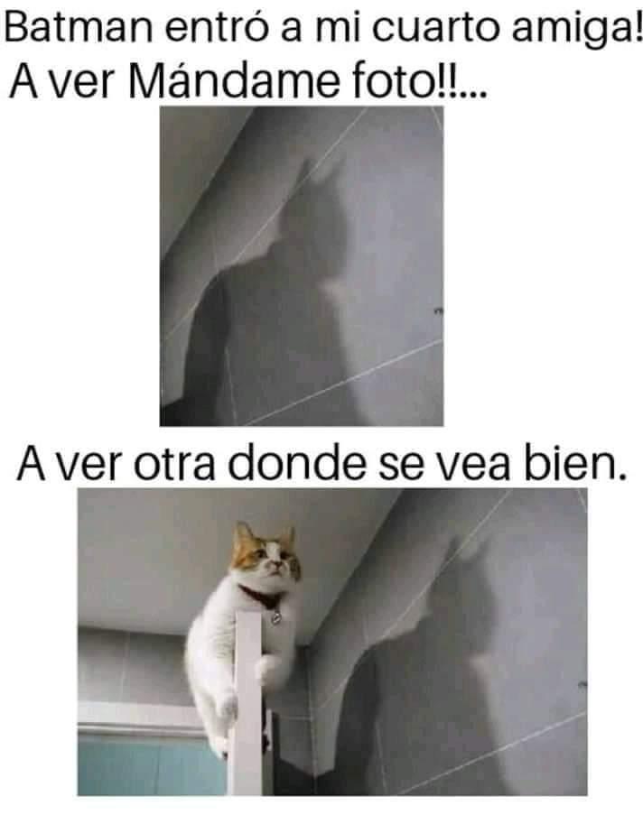 Marcianadas 378 03May2019001552 (46)