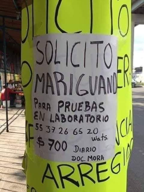 Marcianadas 378 03May2019001552 (5)