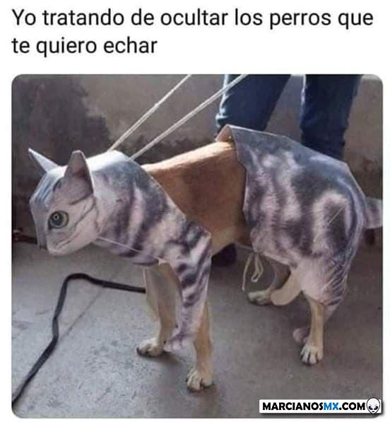 Marcianadas 379 100519001505 (110)