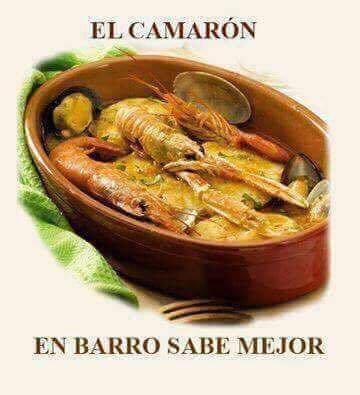 Marcianadas 379 100519001505 (137)