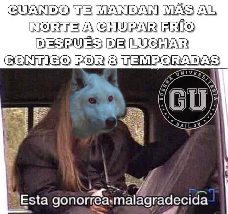 Marcianadas 379 100519001505 (302)